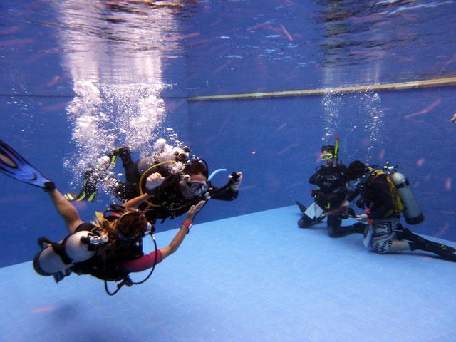 Starfish diving center
